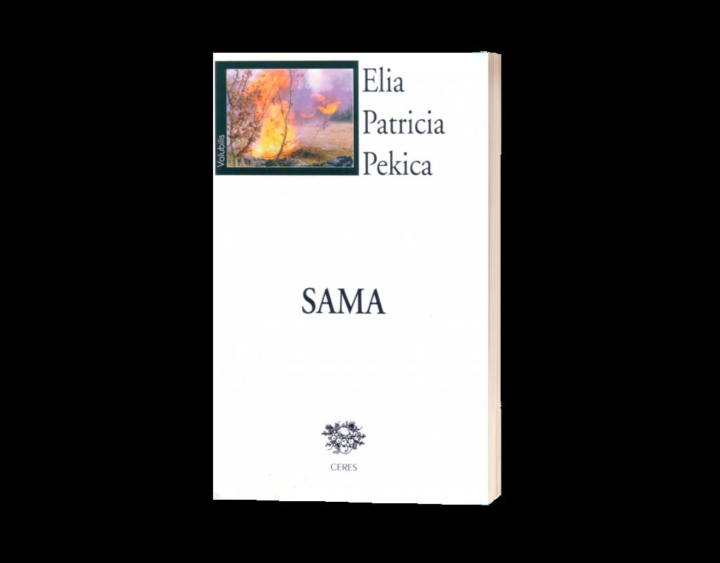 sama-3d-b