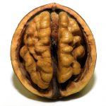 Ispiranje mozgova